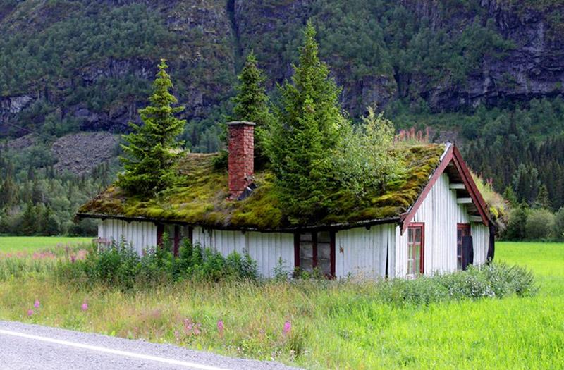 nórske zelené strechy