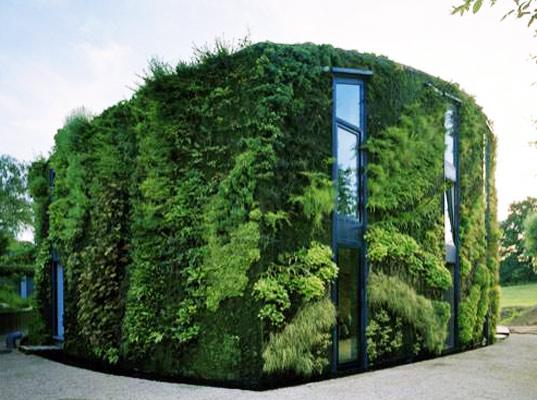 zelená budova