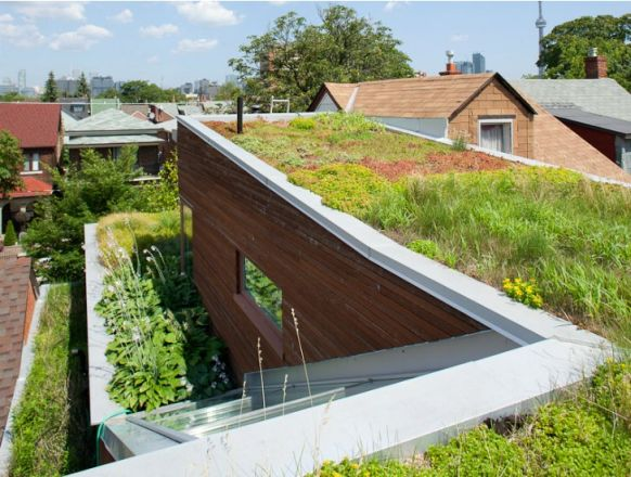 Euclid-Avenue-House-Levitt-Goodman-Architects
