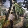 Zelený most - návrh