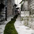street_art_moss_graffiti_Jaujac_4