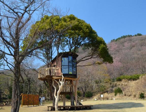 Stromodom v Higashi Izu