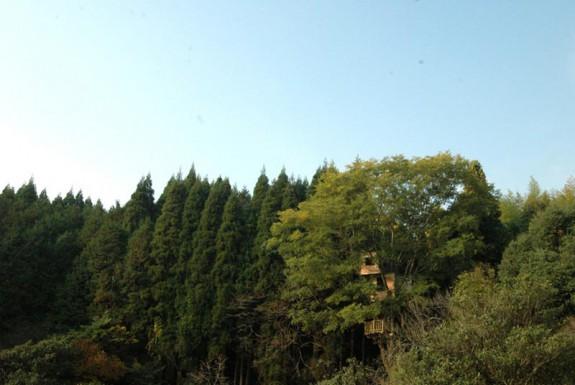 Stromodom v Kagoshime
