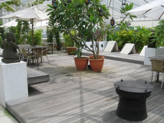 zahrada-střecha