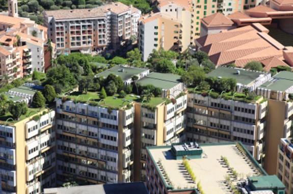 zelena_strecha (2)