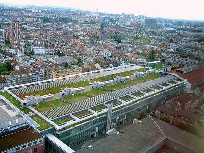 Zelená strecha na bazilejskej Hlavnej výstavnej sieni je údajne najväčšia vegetačná strecha vo Švajčiarsku zdroj: http://photos.travellerspoint.com/227935/Basel.jpg
