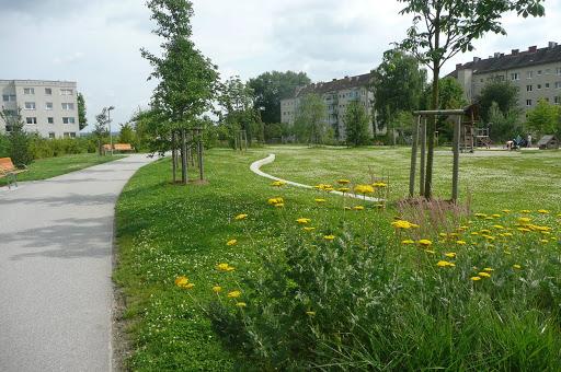 Bindermichel Park, vegetačná strecha pokrýva diaľnicu vrakúskom Linzi. 20,000 ľudí sa zúčastnilo slávnostného otvorenia parku vroku 2007 (photo by Nancy Arazan) zdroj: https://picasaweb.google.com/buildgreeninfrastructure/GreenRoofsInLinzAustria#5356895572007281890