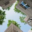 Vonkajšie steny sú vyrobené z monolitického betónu s bambusovým debnením. Foto: Hiroyuki Oki
