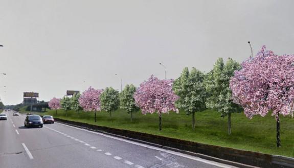 Dolnozemská ulica