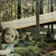 """Na prvom mieste sa umiestnil návrh s názvom """"Future is nature"""". Autorom je Tomáš Boroš."""